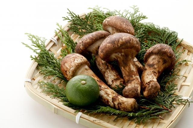[キニナルッ]読者限定で1,000円オフ!今秋はお得に天然松茸を味わおう