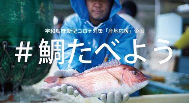 [キニナルッ]みんなで宇和島の鯛を応援しよう!「#鯛たべよう」キャンペーン実施中