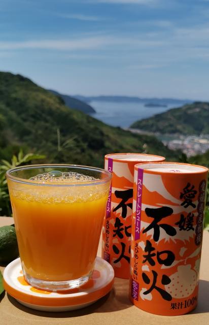 [キニナルッ]人気のカートカンジュースシリーズの待望の新商品「愛媛不知火」が登場