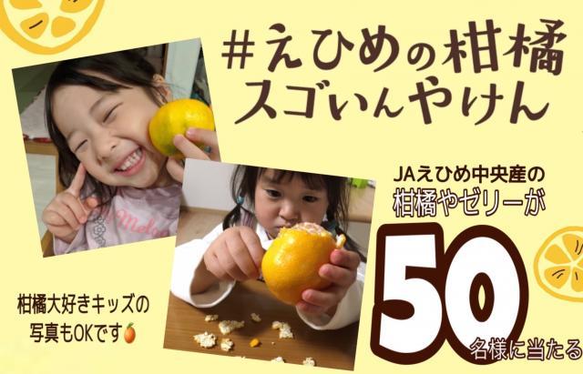 [キニナルッ]JA特別企画「えひめの柑橘スゴいんやけん」合計50名に「せとか」などが当たる!