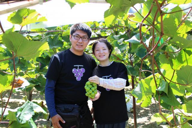 [キニナルッ]自分が育てた世界に一つだけの「葡萄の木のオーナー制度」スタート