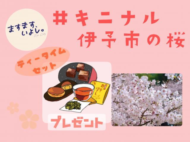 [キニナルッ]伊予市公式Instagramで花見?投稿でプレゼントが当たるキャンペーン中